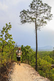 Man hiking forest trail wearing backpack Stock Photos
