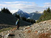 Man Hiking in Garibaldi Provincial Park Royalty Free Stock Image