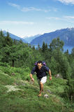Man hiking in the great outdoors.  royalty free stock photos