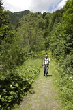 Man hiking in green Stock Images