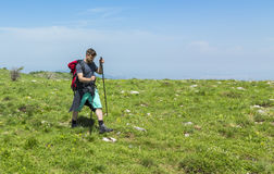 Man Hiking in Green Mountains. Young man with nordic sticks hiking in Apuseni Mountains in Transylvania,Romania Stock Photography