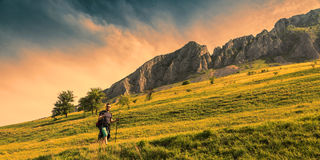 Man Hiking in Green Mountains. Young man with nordic sticks hiking at dusk in Apuseni Mountains in Transylvania,Romania Royalty Free Stock Images