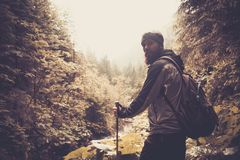Man hiking in mountain forest Stock Image