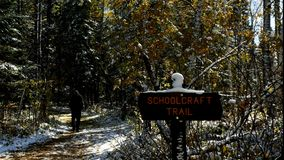 Man hiking on Schoolcraft Trail in Lake Itasca State Park, Minnesota. On sunny morning after early autumn snowfall stock video