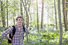 Man walking in forest Stock Images