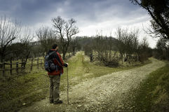 Man Hiking in Spring Royalty Free Stock Photography