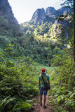 Man hiking in a thick rainforest Stock Images