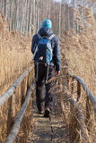 Man on hiking trail Stock Photos