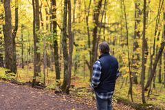 Man hiking a trail in the Porcupine Mountains on a misty autumn day stock photos