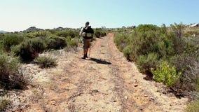 Man hiking through a wild terrain stock video