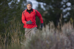 Man Hiking in the Wilderness Stock Image