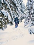 Man hiking on the winter snowy forest with backpack. Travel, fit. Ness and healthy lifestyle Stock Photo