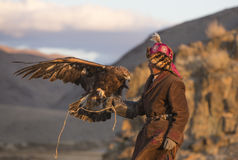 Man with his Altai Golden Eagle. Bayan Ulgii, Mongolia, October 2nd, 2015: Man with his horse and Altai Golden eagle at sunset Royalty Free Stock Image