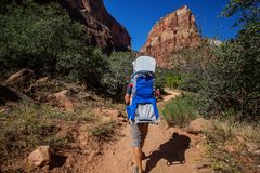 A man with his baby boy are trekking in Zion national park, Utah, USA stock image