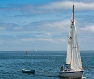 A Sail boat towing a dingy with a man and his labrador on the boat in calm waters. On Tampa bay Florida. No Model/Property Release Royalty Free Stock Photo