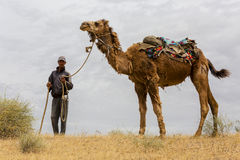 A man with his camel in the Kyzylkum desert in Uzbekistan, looks at me. A man holding his camel and looking at me in the Kyzylkum desert, in Uzbekistan Stock Photography