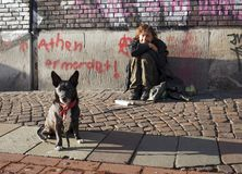 A man and his dog in Bremen Germany Stock Photos