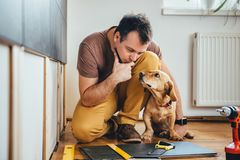 Man and his dog doing renovation work at home. Man doing renovation work at home together with his small yellow dog Royalty Free Stock Images