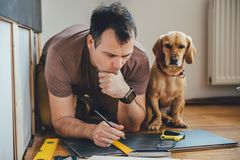 Man and his dog doing renovation work at home. Man doing renovation work at home together with his small yellow dog stock photos