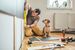 Man and his dog doing renovation work at home. Man doing renovation work at home together with his small yellow dog royalty free stock image