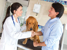 Handshake at the vet Stock Photography