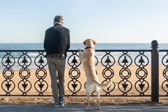 A man with his dog leaning on a railing watching the sea in the background stock images