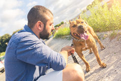 Man with his dog at park stock image