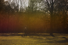 A man and his dog in a park. The sun on the grain royalty free stock photography