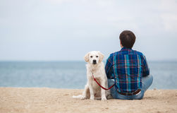Man with his dog at the summer beach sitting back to camera stock image