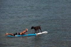 Man and his dog surfing
