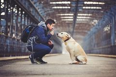 Man with his dog Royalty Free Stock Image