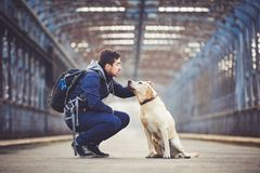 Man with his dog. Man with his yellow labrador retriever on the old bridge Royalty Free Stock Images