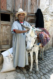 A man with his donkey waiting for a load of goods to transport in the Fez medina, Morocco. Stock Photos