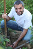 Man in his garden royalty free stock photography