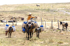 A man with his horse and donkeys in the mountains of Morocco. Royalty Free Stock Photos