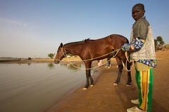 A man and his horse. MALI, DJENNE, JANUARY 1: Unidentified young  man and his horse close at the Niger river on the way to Djenné with a blue sky.2011 Royalty Free Stock Photography
