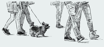 Man and his pet. Vector sketch of a little dog on a walk on a city street Royalty Free Stock Photography