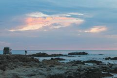Sunset on the Rocky Monterey Ca, stock photos