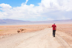 Man hitchhiking the car royalty free stock photography