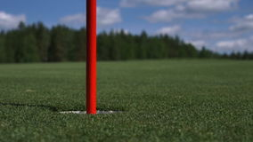 The man hits the Golf ball. Golf course stock video footage