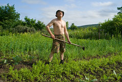 Man with Hoe 2. A man weeds garden-bed with hoe Stock Photo