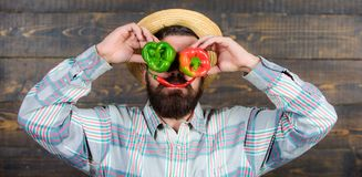 Man hold pepper harvest as funny grimace. Chilli and sweet pepper as smile and eyes. Bearded farmer hold peppers in. Front of face. Pepper harvest concept stock photography