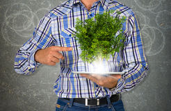 Man hold tablet pc with green tree Royalty Free Stock Photo