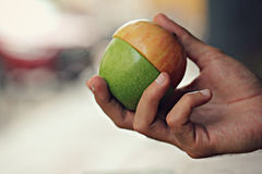A man holdds a two-toned apple sits at an outdoor bar Stock Image