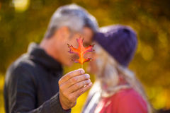 Man holding autumn leaf while kissing woman Royalty Free Stock Images