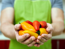 Man holding baby peppers Royalty Free Stock Images