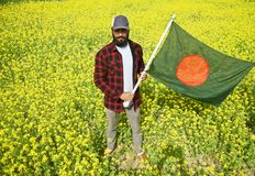 Man holding a Bangladeshi flag standing. In a mustard crops field unique photo royalty free stock photography