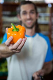 Man holding bell pepper Stock Photo