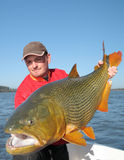 Man holding big Golden Dorado (Salto Grande, Uruguay) Royalty Free Stock Images