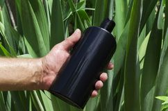 Free Man Holding Black Bottle Of Shampoo Against Green Leaves, Sun Lights Stock Image - 152108891